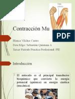CONTRACCION MUSCULAR 2do PPT PIE
