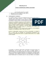 Practica N° 11 Clorofila y Clorofilinas