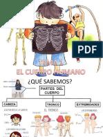 241948167-EL-CUERPO-HUMANO-PRESENTACION-ppt
