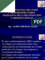 RCP_basico (1)