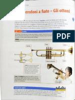 Gli strumenti musicali - gli ottoni