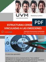 ESTRUCTURAS_CEREBRALES_VINCULADAS_EMOCIONES (1)
