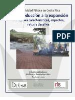 Estudio La actividad Piñera en Costa Rica De la producción a la expansión Principales características, impactos, retos y desafíos. Ditso.