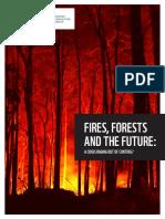 WWF_ForestFiresReport2020_final