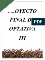 Proyecto Final de Asignatura Optativa III (1) (1)
