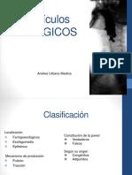 diverticulosesofagicos-160517055841.pdf