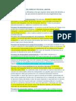 PRINCIPIOS PROPIOS DEL DERECHO PROCESAL LABORAL