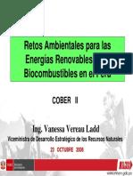 4_Vanessa_Vereau.pdf