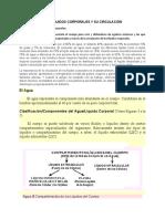 Documento de estudio mapa conceptual (1)
