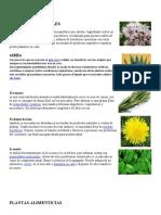 PLANTAS MEDICINALE1