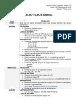 GUÍA DE TRABAJO SEMANAL 9-13nov (4)
