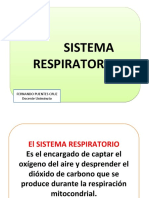 CLASE 4 SISTEMA RESPIRATORIO.ppt