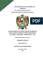 TESIS IAG63_Allc.pdf