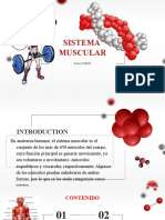 expo muscular