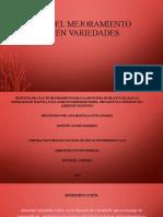 propuesta del Plan del mejoramiento almacén variedades keira lina.pptx