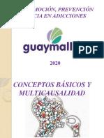 TALLER CONCEPTOS BASICOS 2020