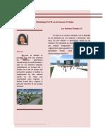 Artículo Final Revista Metodología PACIE en los Entornos Virtuales 3Da