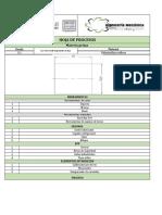 Hoja de procesos CABEZOTE.pdf