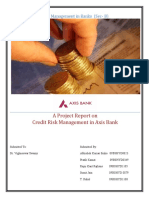 Credit Risk Management in Axis Bank_Rajhans