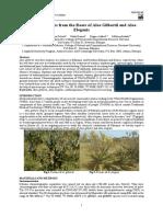 Mudin research paper