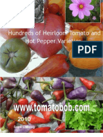 GL Tomato Heirloom Seeds Garden Tomate