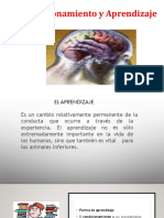 APRENDIZAJE Y CONDICIONAMIENTO (1).pdf