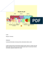 luzvida- Relacion alcalino-Acido