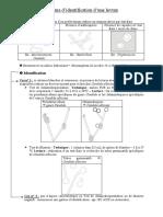 identification_d-une_levure.pdf