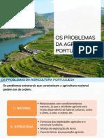 Características e problemas da agricultura portuguesa