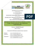 hadadYoussouf_SN_M2_15.pdf