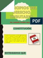 PRINCIPIOS DERECHO TRIBUTARIO