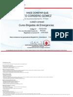 O316-2020_Certificado Curso Brigadas de Emergencias