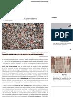 Introducción a la sociología (I)_ Historia y antecedentes