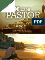 salmo 23-3 La solucion de Dios para las emociones dañadas
