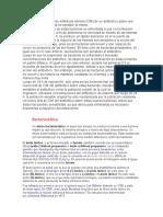 resumen de bac.docx