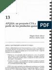 Un proyecto CTS. Medir y Abello (2001)