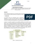 Adelanto informe arequipe
