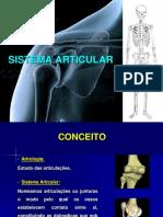 ANATOMIA HUMANA_SITEMA ARTICULAR AULA 3