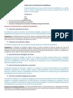 ESTRUCTURA Y FUNCIONAMIENTO DE LA JURISDICCION INMOBILIARIA.pdf