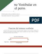Sindrome Vestibular En Perros-SEMINARIO