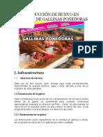 PRODUCCIÓN DE HUEVO EN SISTEMAS DE GALLINAS PONEDORAS.docx