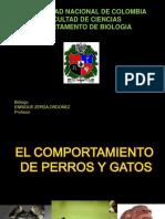 COMPORTAMIENTO DE MASCOTAS2.pdf