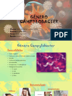Genero_Campylobacter_exposicion