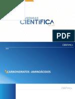 14 ava.  Semana Carbohidratos 3 Aminoácidos y proteinas 1.pdf