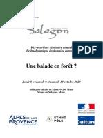 Seminaire_Salagon_2020
