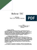 referat-informatica.docx