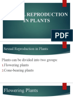 2 SEXUAL REPRODUCTION IN PLANTS.pptx