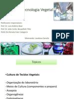 2 aula Biotecnologia Agricola Laudiane