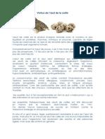vertus-oc-1.pdf