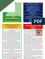 La Gazeta de Mora Claros nº 105 - 07012011